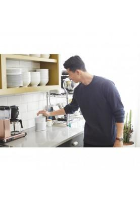 Smart колонка Bose Home Speaker 300 Silver (808429-2300)